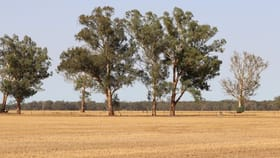 Rural / Farming commercial property for sale at 139 Fishers Road Combaning NSW 2666
