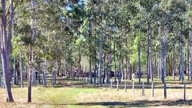 Rural / Farming commercial property for sale at 5120 Summerland Way Whiporie NSW 2469