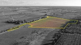 Rural / Farming commercial property for sale at 697a & 698b Boomerang Avenue Irymple VIC 3498