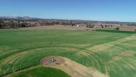 Rural / Farming commercial property for sale at 1155 Jambin Dakenbah Road Biloela QLD 4715