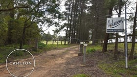 Rural / Farming commercial property for sale at Bullio NSW 2575