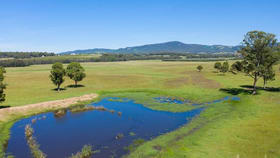 Rural / Farming commercial property for sale at Lot 102, 221 Debeyers Road Pokolbin NSW 2320