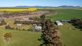 Rural / Farming commercial property for sale at 2177 Tod Highway Edillilie SA 5630