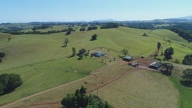 Rural / Farming commercial property for sale at 495 Bauld Road Malanda QLD 4885