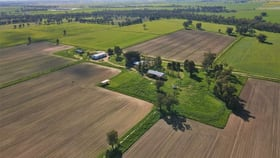 Rural / Farming commercial property sold at Ulmarra, 10419 The Escort Way Forbes NSW 2871