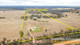 Rural / Farming commercial property for sale at 120R Minore Road Minore NSW 2830
