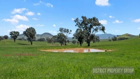 Rural / Farming commercial property sold at 4 Lily Court Mansfield VIC 3722