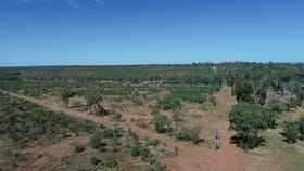 Rural / Farming commercial property for sale at Lot 2 CAPRICORN HIGHWAY Duaringa QLD 4712