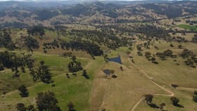 """Rural / Farming commercial property for sale at """"Coghlan"""", 3108 Limbri-Weabonga Road Tamworth NSW 2340"""