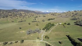 Rural / Farming commercial property for sale at 367 Nimbo  Road Tumut NSW 2720