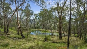 Rural / Farming commercial property for sale at 9846 Murray River Rd Pine Mountain VIC 3709