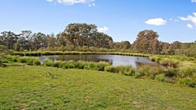 Rural / Farming commercial property for sale at Lots/176 & 177 Stinkpot Road Gunning NSW 2581