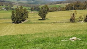 Rural / Farming commercial property for sale at 829 Redbank Road Triangle Flat NSW 2795