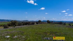 Rural / Farming commercial property for sale at 5/705 Springfield  Lane Gulgong NSW 2852