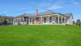 Rural / Farming commercial property for sale at 850 Rouchel Road Aberdeen NSW 2336