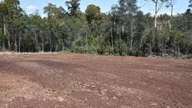 Rural / Farming commercial property for sale at Lot 1 Quamby Brook RD. Quamby Brook TAS 7304