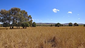 Rural / Farming commercial property for sale at Schloss Road Thangool QLD 4716
