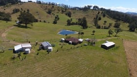 Rural / Farming commercial property for sale at 495 Belbora Creek Road Gloucester NSW 2422