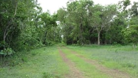 Rural / Farming commercial property for sale at Section 2941 Fog Bay Road Dundee Downs NT 0840