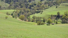 Rural / Farming commercial property for sale at 436 Davis Creek Rd, Rouchel via Aberdeen NSW 2336