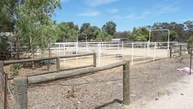 Rural / Farming commercial property for sale at 8488 Brookton Highway Brookton WA 6306