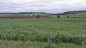 Rural / Farming commercial property for sale at Lot 169 Reserve Road Allora QLD 4362