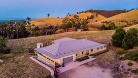 Rural / Farming commercial property for sale at 197 Petersons Road Ellinbank VIC 3821
