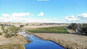 Rural / Farming commercial property for sale at Pindari Road Ashford NSW 2361