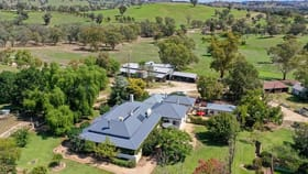 Rural / Farming commercial property for sale at 1233 Wymah Road Bowna NSW 2644