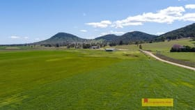 Rural / Farming commercial property for sale at 434 Melrose  Road Mudgee NSW 2850