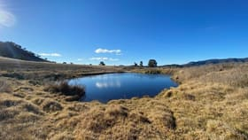 Rural / Farming commercial property for sale at 686 Queens Pinch Road Mudgee NSW 2850