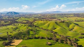Rural / Farming commercial property for sale at 1231 Howes Creek Road Mansfield VIC 3722