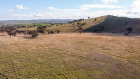 Rural / Farming commercial property for sale at Cnr Brial & Rugby Road Boorowa NSW 2586
