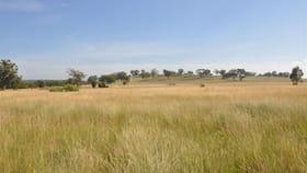 Rural / Farming commercial property for sale at 'Brooklyn West' 48 Wingabutta Rd Binnaway NSW 2395