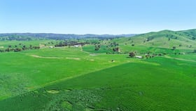 Rural / Farming commercial property for sale at 2755 Triamble Rd Triamble NSW 2850