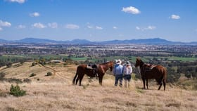 """Rural / Farming commercial property for sale at """"Mountain Valley"""" Eloura Road Tamworth NSW 2340"""