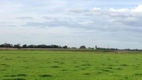 Rural / Farming commercial property for sale at 815 Katamatite Shepparton Road Invergordon VIC 3636