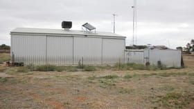 Rural / Farming commercial property for sale at Sect. 228 Micky Flat Road Curramulka SA 5580