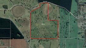 Rural / Farming commercial property for sale at 189 Rust Road Tarpeena SA 5277