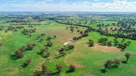 Rural / Farming commercial property for sale at 2185 Bowan Park Road Orange NSW 2800