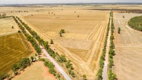 Rural / Farming commercial property for sale at Grong Grong NSW 2652