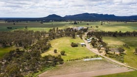 Rural / Farming commercial property for sale at 1004 NORTHERN GRAMPIANS ROAD Laharum VIC 3401