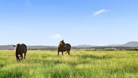 Rural / Farming commercial property for sale at 105 Windermere Road Lochinvar NSW 2321