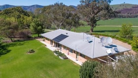 Rural / Farming commercial property for sale at 4974 River Rd Talmalmo NSW 2640