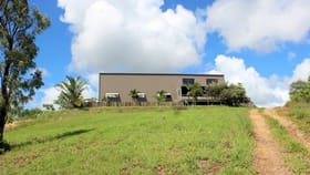 Rural / Farming commercial property for sale at 434 Wilton Access Rd. Cooktown QLD 4895