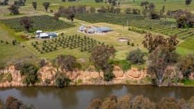 Rural / Farming commercial property for sale at 651 Police Paddocks Road Carlyle VIC 3685
