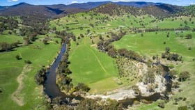 Rural / Farming commercial property for sale at Tumut NSW 2720