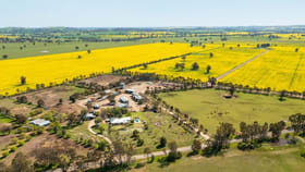 Rural / Farming commercial property for sale at 1373 GOORAMBAT-THOONA ROAD Thoona VIC 3726