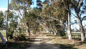 Rural / Farming commercial property for sale at 211 Mt Aitken Rd Diggers Rest VIC 3427
