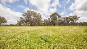 Rural / Farming commercial property for sale at 305 Rocky Castle Road Penola SA 5277